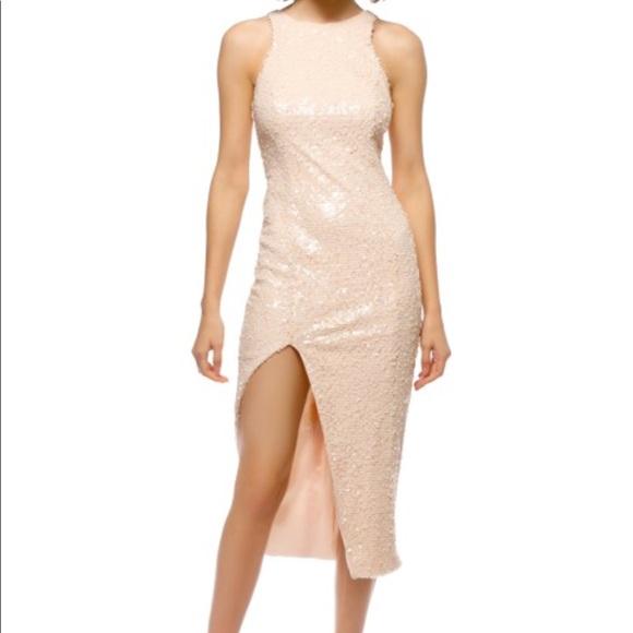 424cfaab11c29 JAYGODFREY Dresses | Jay Godfrey Nwt Size 2 Nude Sequin Sheath Dress ...